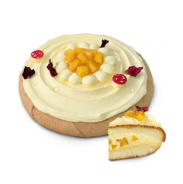 Boston Cake Pie-Mango